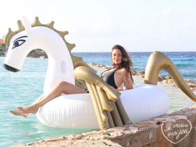 Inflatable Pegasus