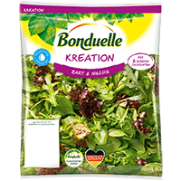 Bonduelle Frische Salate Coupon