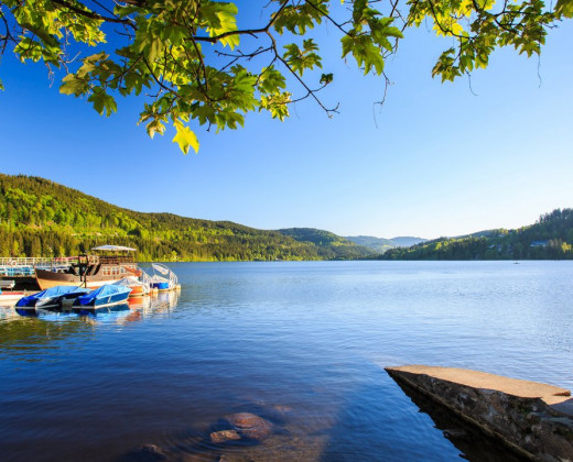 NATURE TITISEE - Easy.Life.Hotel. afbeelding