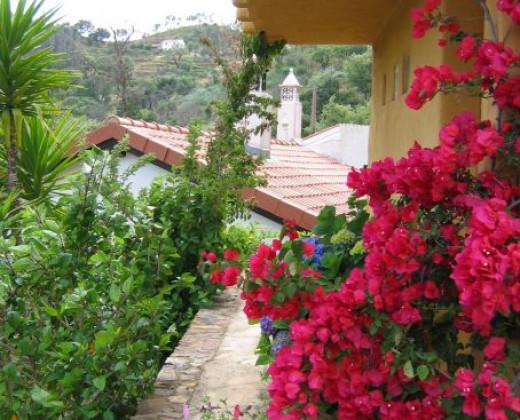 Natuurhuisje in Monchique afbeelding