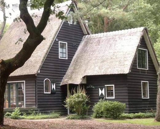 Natuurhuisje in Norg afbeelding