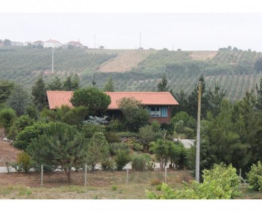 Natuurhuisje in Obidos, fraldeu navalha afbeelding