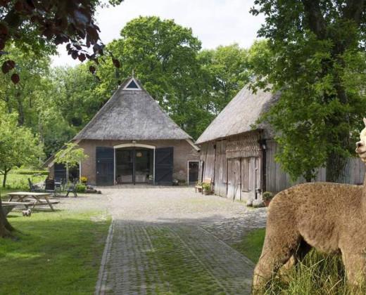 Natuurhuisje in Oosterhesselen afbeelding