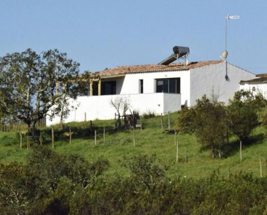 Natuurhuisje in Ourique afbeelding