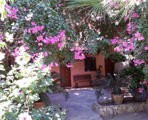Natuurhuisje in Paleochora-chanea-crete afbeelding