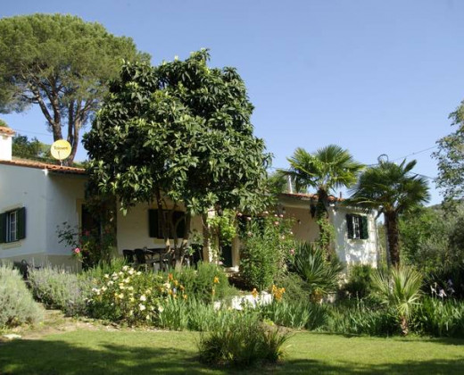 Natuurhuisje in Santana da serra afbeelding