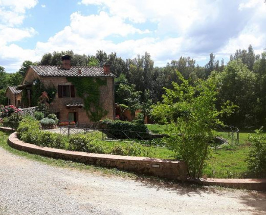Natuurhuisje in Sovicille afbeelding