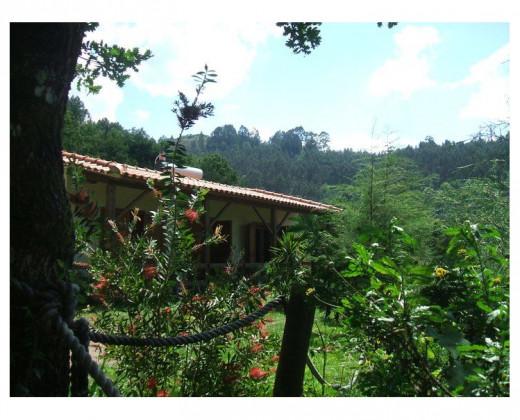 Natuurhuisje in Vieira do minho afbeelding