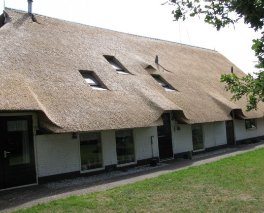 Natuurhuisje in Wapserveen afbeelding