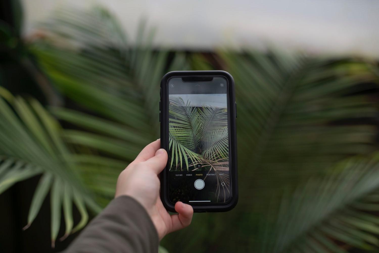 15 duurzame apps - Apps voor een groene lifestyle afbeelding