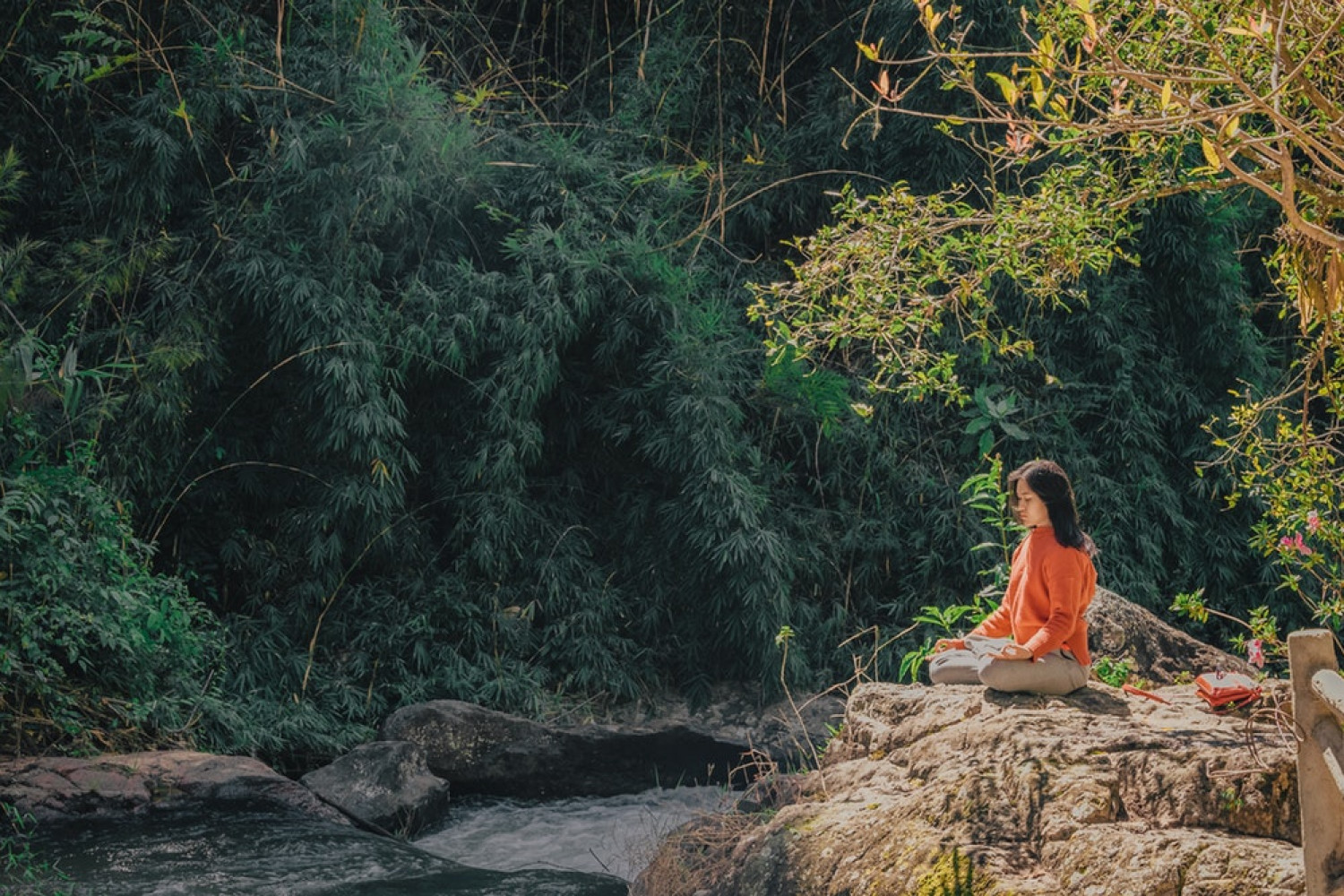 6 Powerful Ways to Make Your Hotel or Yoga Retreat Eco-Friendly & Sustainable afbeelding