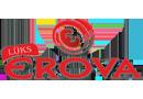 Lüks Erova Turizm İzmir Ankara otobüs bileti