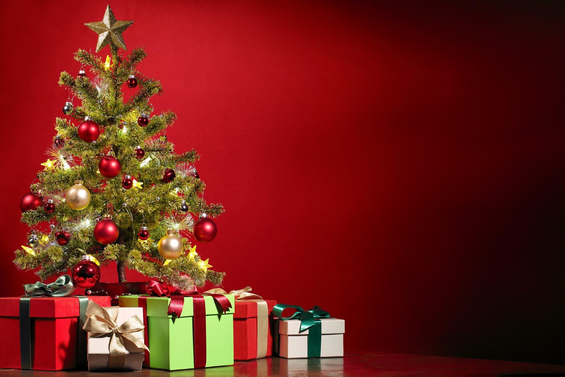 Weihnachtsbaum Gedicht.Der Weihnachtsbaum Ein Neues Weihnachtsgedicht
