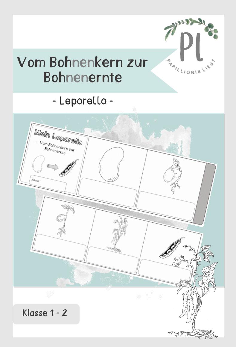 Die Bohne Arbeitsblätter in Silbenschrift Klasse 200/20 ...
