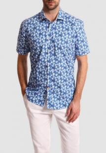 Рубашка Kanzler MP002XM24VAUCM420