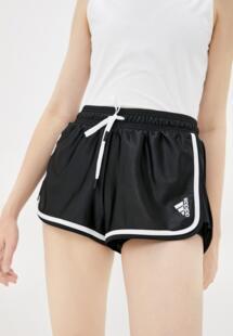 Шорты спортивные Adidas RTLAAA138401INL