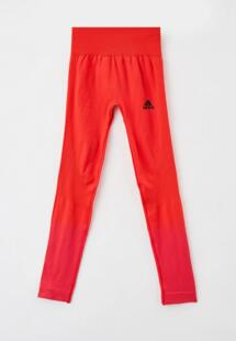 Леггинсы Adidas RTLAAK699901CM170