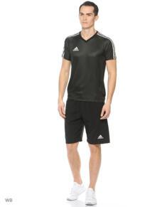 Шорты спортивные Adidas 3906071