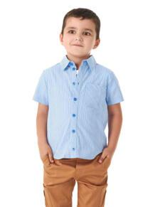 Рубашки Goldy 6046472