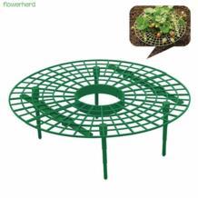 30x30 см 1 штука Подставка-Клубничка Удобная клубника поддерживает для вашего сада держать клубнику от гнить в дождливые дни flowerherd 32960167656