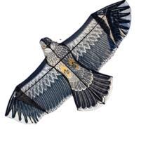 Бесплатная доставка Спорт на открытом воздухе Высокое качество 2,4 М МОЩНОСТЬ Орел воздушный змей с ручкой и линией легко управлять Летающий 100% оригинальный завод No name 32282565050
