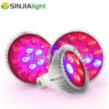 SINJIAlight 32232884727