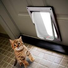 Kimpets запираемый Собака Кошка безопасности откидной двери ворота пандусы Универсальный для всех размеры No name 32885011337