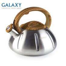 Чайник GL 9206 (Объем 3 л, высококачественная нержавеющая сталь, подходит для всех типов плит)-in Чайники from Дом и животные on Aliexpress.com | Alibaba Group GALAXY 1000003991851