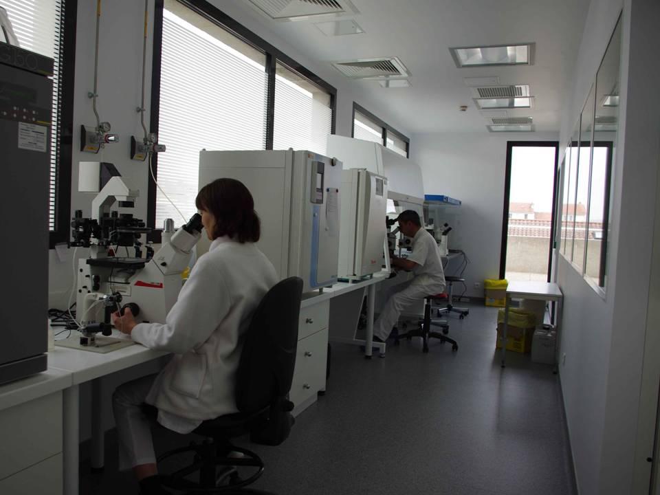 Laboratoire d'Aide Médicale à la Procréation (AMP).jpg