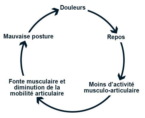 cercle vicieux de la lombalgie