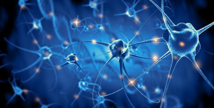 Troubles cognitifs légers (TCL) et démence :