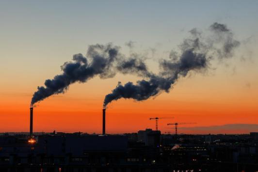 Médecine environnementale :