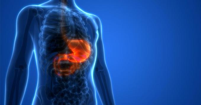 Prise en charge de l'obésité : quelle est la place de la sleeve gastroplastie endoscopique ?
