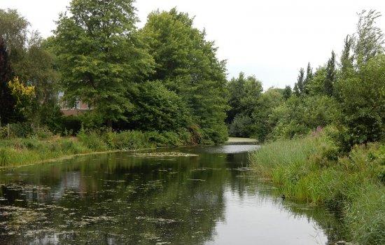 Nieuwbouwproject Wonen op het Eiland te Nieuwveen