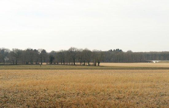 Nieuwbouwproject Oude Groningerweg te Gieten