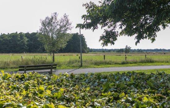 Lutsborgsweg 19, HAREN GN