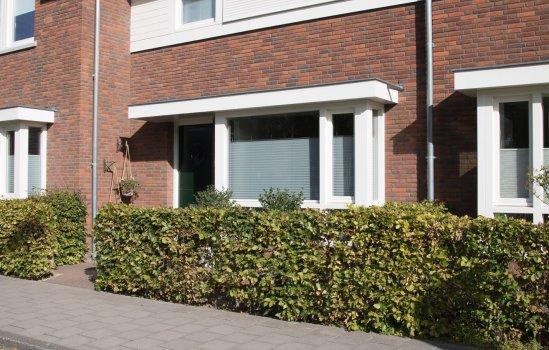 Stadswoning | Berckelbosch, bouwnummer 407