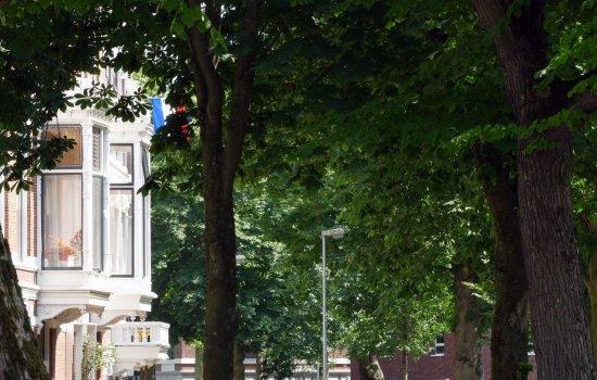 Praediniussingel 35, GRONINGEN