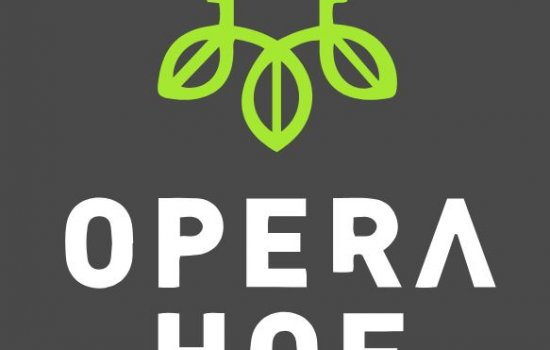 Operahof - ruime stadswoningen, bouwnummer 31