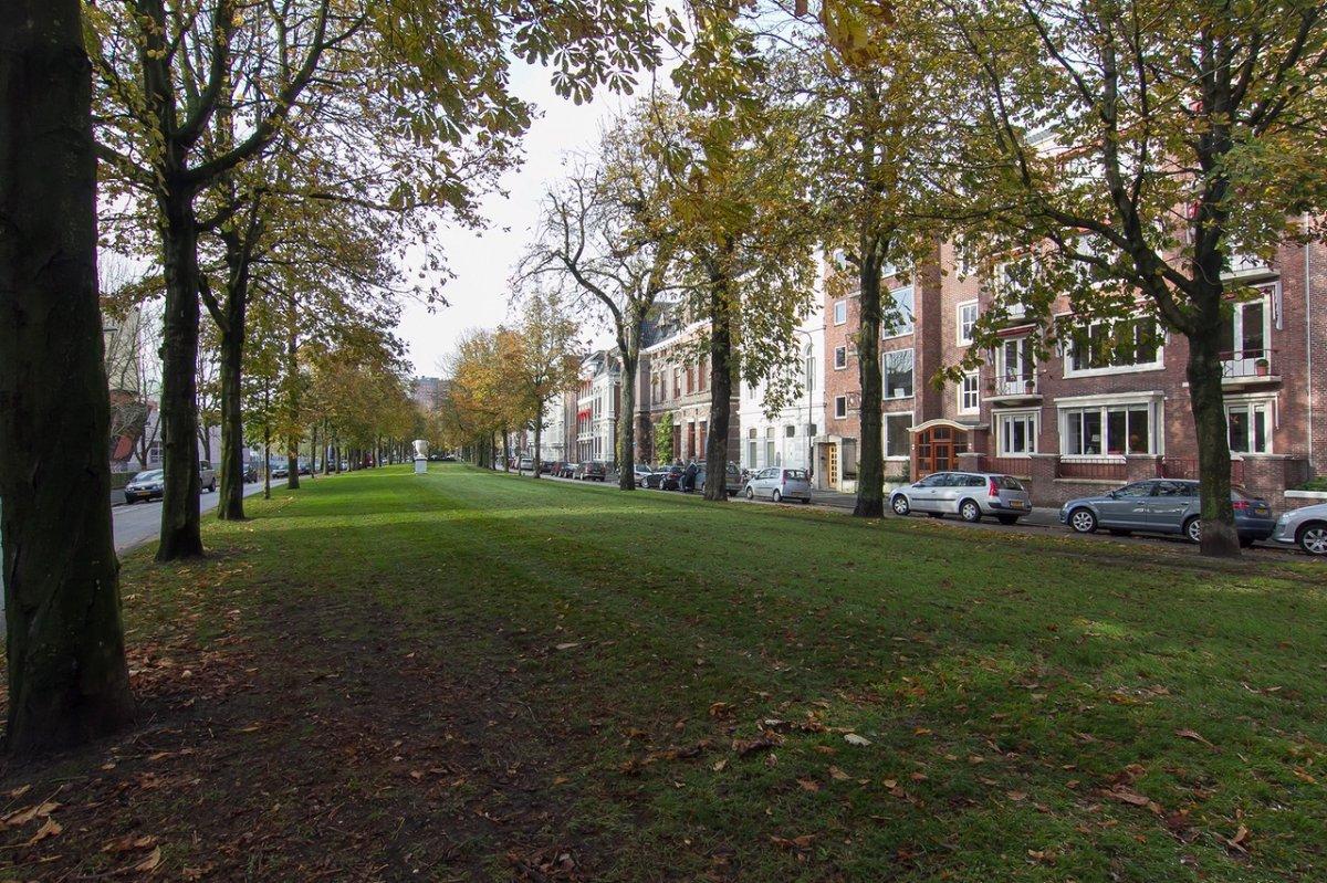Luxe Badkamers Groningen : Ubbo emmiussingel groningen