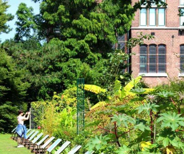 Nieuwbouwproject Botanisch Park in Groningen
