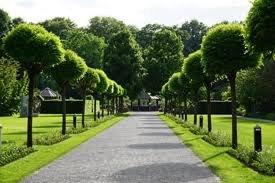 Nieuwbouwproject Botanisch Park fase 2 in Groningen