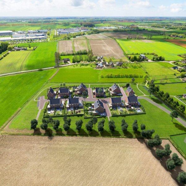 Nieuwbouwproject Hof van Campe cluster 8 in Ewijk