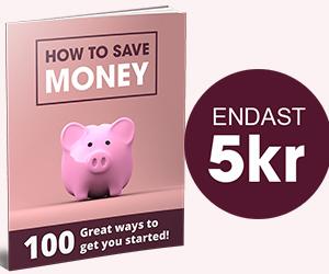 100 ways to save money - PULZ - 300x250