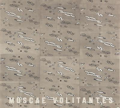 Willem Oorebeek, Muscae volitantes, 1987