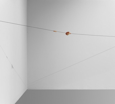Paul Thek, Meat Cable, 1968. Wax, steal, 720 cm. Collection Museum Boijmans Van Beuningen.