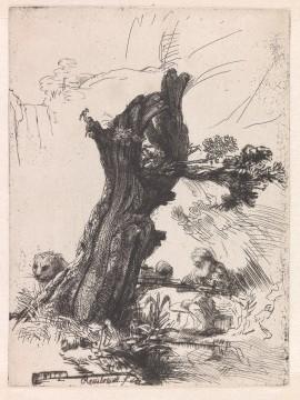 Rembrandt van Rijn, De heilige Hieronymus bij een knotwilg, 1648, Museum Boijmans Van Beuningen, Rotterdam / Creditline fotograaf: Rik Klein Gotink, Harderwijk