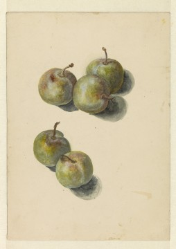 Edouard Manet, Study with five prunes, 1880, Museum Boijmans Van Beuningen. Former Collection Koenigs