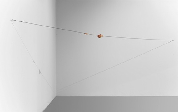 Paul Thek, Meat Cable, 1968. Was, staal, lengte 720 cm. Collectie Museum Boijmans Van Beuningen. Foto: Studio Tromp.