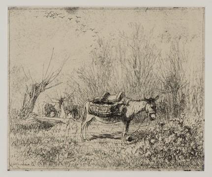 Charles-François Daubigny, Ezel in het veld, 1862 cliché-verre, 15,8 x 19,1 cm Editie 1921. Nr. 104 van een oplage van 150. Verzameling W., prenthandel Robert Prouté, Parijs 1975.
